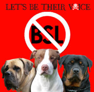 BSL3.png